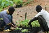 Investment guarantees in Sierra Leone
