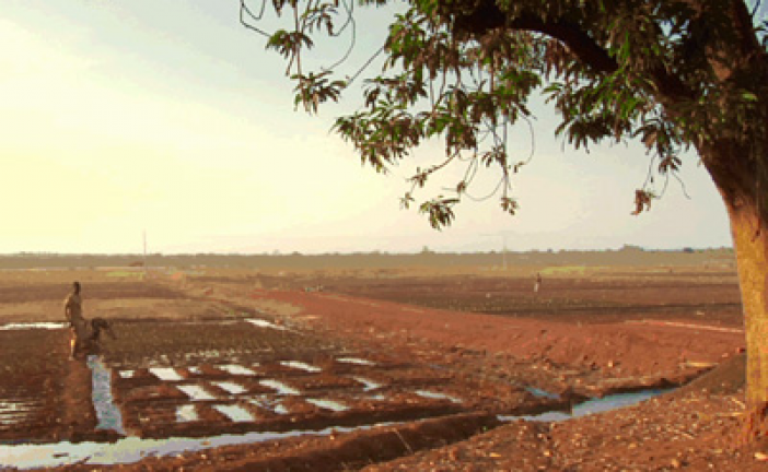 Fighting Drought, Building Resilience in the Sahel one Community at a Time