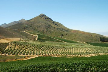 44% of African Land is Fertile