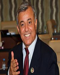 LIBYA2 African Presidents