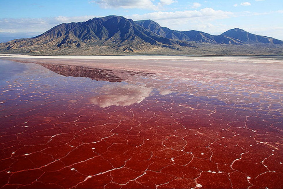salty lake natron