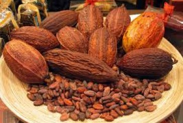Key Exports in Ghana