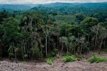 Natural Resources of Republic of Congo