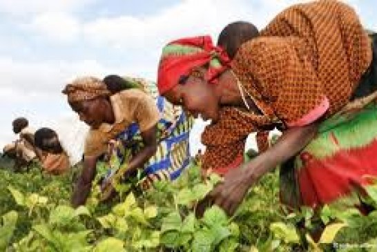 Investment Opportunities in Burundi